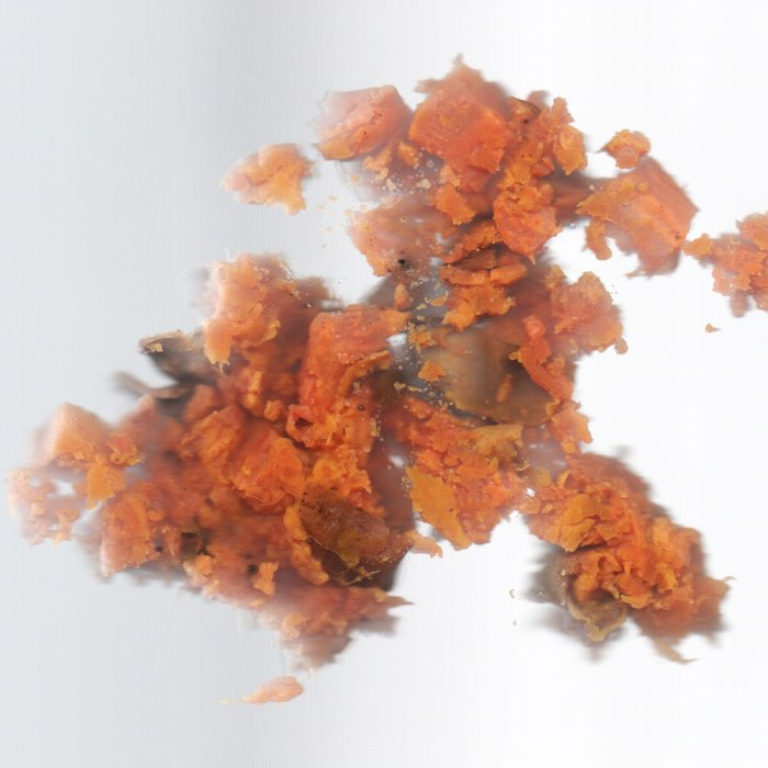 Nasty, mushy sweet potato in my scanner. Sad face.