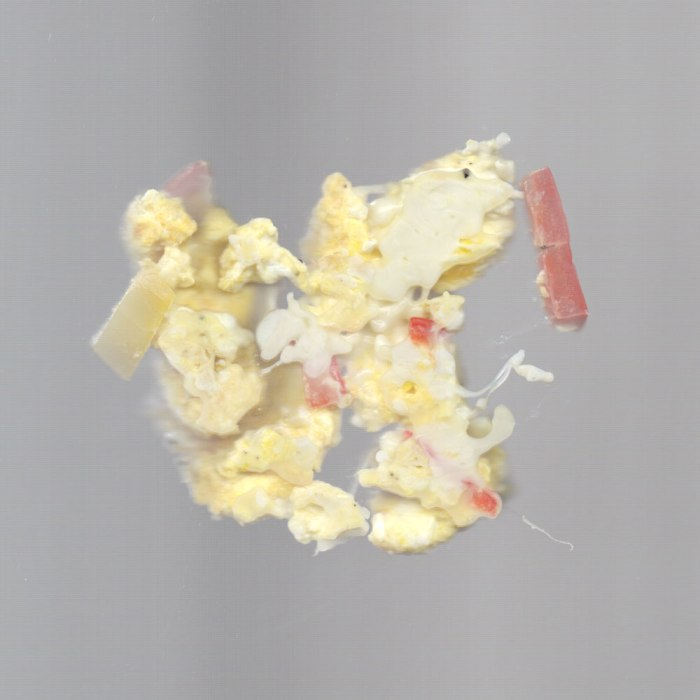Scrambled eggs in my scanner. Not very attractive.