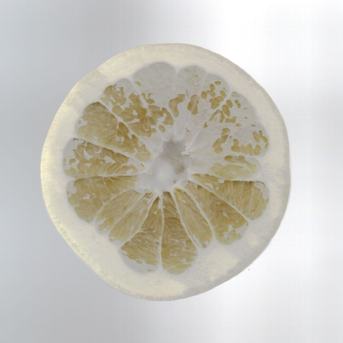 White grapefruit in my scanner